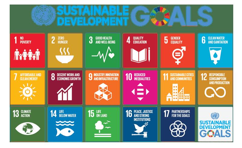de 17 duurzame ontwikkelingsdoelstellingen